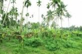 കൊടകരയിൽനിന്നും ഒന്നര കിലോമീറ്ററകലെ ഹൗസ് പ്ലോട്ടുകൾ വില്പ്പനക്ക്