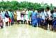 ചെമ്പുച്ചിറ ഗവ: ഹയർ സെക്കന്ററി സ്കൂളിലെ ജൈവ നെൽകൃഷി വിത്തിടൽ ഉദ്ഘാടനം നടന്നു