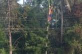 പുത്തുകാവ് താലപ്പൊലിക്ക്് കൊടിയേറി; താലപ്പൊലി മഹോത്സവം ജനുവരി 24 ന്